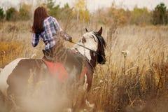 Brunette Woman on horseback Stock Images