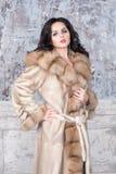Brunette woman with jewelry wearing luxury fur coat. Fashion model girl portrait, studio shot. Winter clothes. Brunette woman with jewelry wearing luxury fur Stock Photography