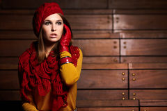 Brunette woman portrait in autumn color Stock Image