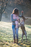 Brunette woman posing with her adorable German pointer dog Royalty Free Stock Photo