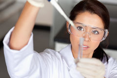 Brunette woman pouring liquid in a tube. Brunette woman pouring a liquid in a tube in a laboratory Royalty Free Stock Image