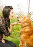 Brunette Woman Praising Her Golden Retriever Dog Canine. A female shares a moment with her dog in the backyard Stock Photo