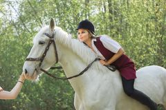 Brunette woman riding dark horse at summer green forest. Young beautiful smiling brunette woman wearing white dress riding dark horse at summer green forest Stock Photography