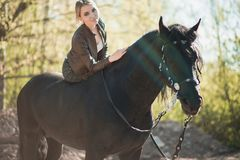 Brunette woman riding dark horse at summer green forest. royalty free stock images