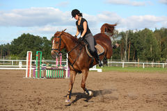 Brunette woman riding playful chestnut horse Stock Photography
