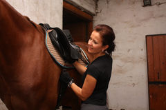 Brunette woman saddling up brown horse Stock Photo