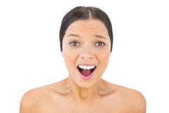 Brunette woman screaming at camera Royalty Free Stock Image