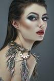 Brunette woman with makeup Stock Photos