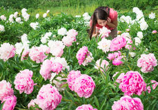 Brunette woman smelling flowers peonies Royalty Free Stock Images
