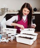 Brunette woman sowing seeds Stock Photos