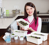Brunette woman with various sprouts Stock Images