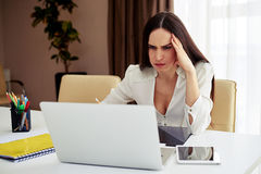 Brunette working on her notebook in a modern office Royalty Free Stock Images