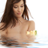 Brunette with yellow lily flow Stock Images