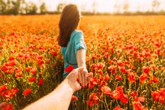 Woman leading a man in red poppies meadow. stock image