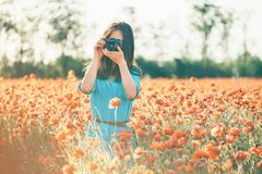 Woman photographing with a camera in poppy meadow. Brunette young woman photographing with a camera in poppy flower meadow in spring outdoor stock images