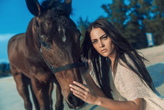 Brunette young woman posing with a stallion. Brunette young woman posing with a majestic stallion Royalty Free Stock Photography