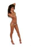 Brunettebaumuster in einem Bikini Stockfoto