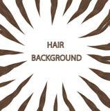 Brunettehaar auf einem weißen Hintergrund Stockfoto