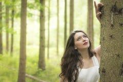 Brunettemädchen im Wald Stockfotos