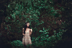 Brunettflicka i kort klänning i skogen royaltyfria foton