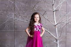 Brunettflickabarn 5 gamla år i en rosa klänning i feriegrå färgrum med trädet royaltyfri fotografi