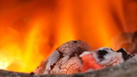 Bruning van brandhoutskool in fornuis stock video