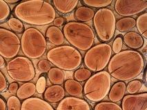 brunisca gli anelli di legno segati, parete è materiali naturali decorati immagini stock libere da diritti