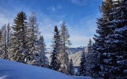 Brunnach滑雪雷索尔,圣奥斯瓦尔德,克恩顿州,奥地利- 2019年1月20日:在倾斜的看法对Nockberge,克恩顿州,奥地利 库存图片