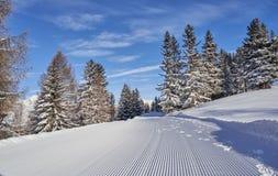 Brunnach ośrodek narciarski, St Oswald, Carinthia Austria, Styczeń, - 20, 2019: Widok nad skłonem wewnątrz biały las, Carinthia, zdjęcia stock