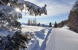 Brunnach Ski Ressort, St. Oswald, Carinthia, Austria - January 20, 2019: Captured sun rays shining throw the trees beside a slope royalty free stock photography