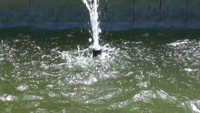 Brunnen stock video
