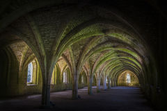 Brunnen-Abtei Cellarium Stockfotografie