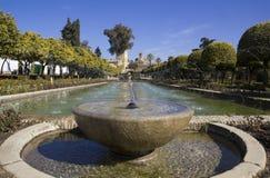 Brunnen in Cordoba Stockbild