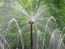 Brunnen der Sun in Peterhof Lizenzfreie Stockbilder