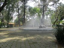 Brunnen in einem quadratischen Guadalajara, Mexiko Lizenzfreies Stockbild