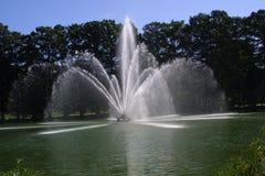 Brunnen Forest Park, St. Louis Missouri stockbilder