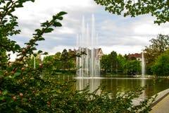 Brunnen, Frühling, opole, Polen Lizenzfreies Stockfoto