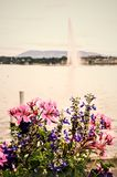 Brunnen in Genf stockfoto
