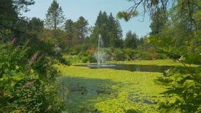 Brunnen im grünen Park stock video footage