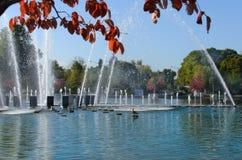 Brunnen im Herbstpark Stockfoto