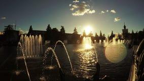 Brunnen im Stadtpark stock video