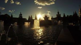 Brunnen im Stadtpark stock video footage