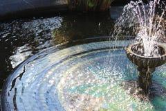Brunnen mit herausspritzendem Wasser in einem botanischen Garten Lizenzfreie Stockfotos