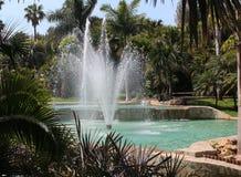 Brunnen mit Palmen stockbilder