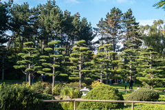 Brunnen, park, Aqua zoo, DÃ ¼ sseldorf Zdjęcie Royalty Free