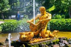 Brunnen in Peterhof-Palast, St Petersburg Stockbild