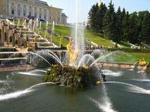 Brunnen Samson im Peterhof Stockbilder