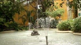 Brunnen in Santiago, Chile stock video