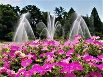 Brunnen und Blumen horizontal Lizenzfreies Stockfoto