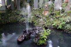 Brunnen und Schildkröten Stockfotografie